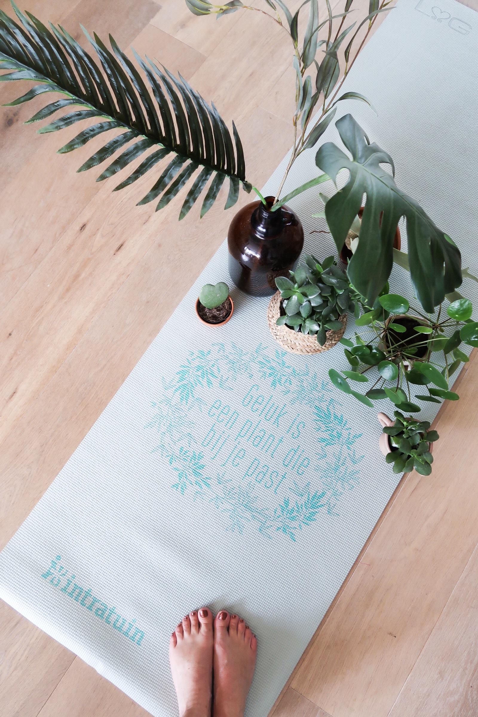 Plantfulness Intratuin